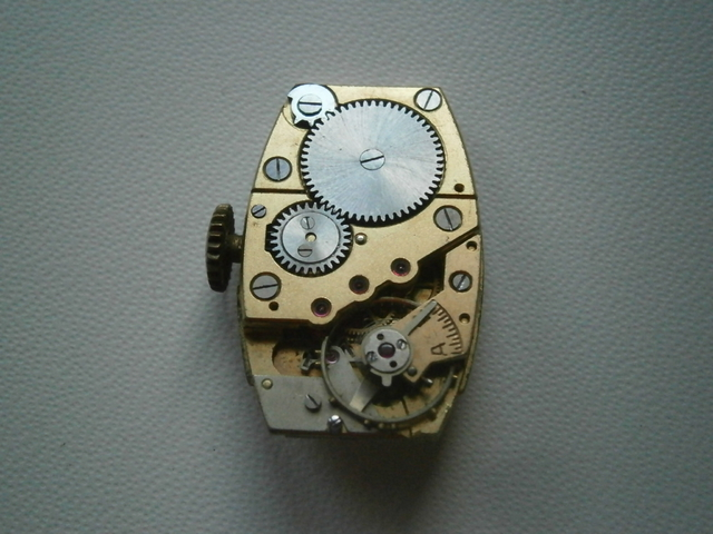 P6150015.JPG
