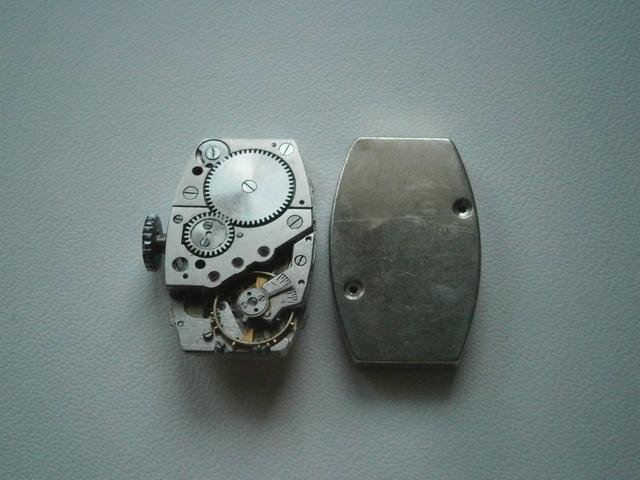 P6150053.JPG