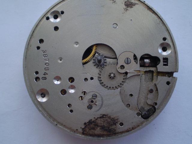P5310013.JPG